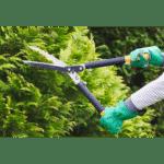 Garden shears